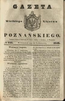 Gazeta Wielkiego Xięstwa Poznańskiego 1843.10.19 Nr245