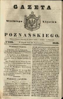 Gazeta Wielkiego Xięstwa Poznańskiego 1843.10.20 Nr246